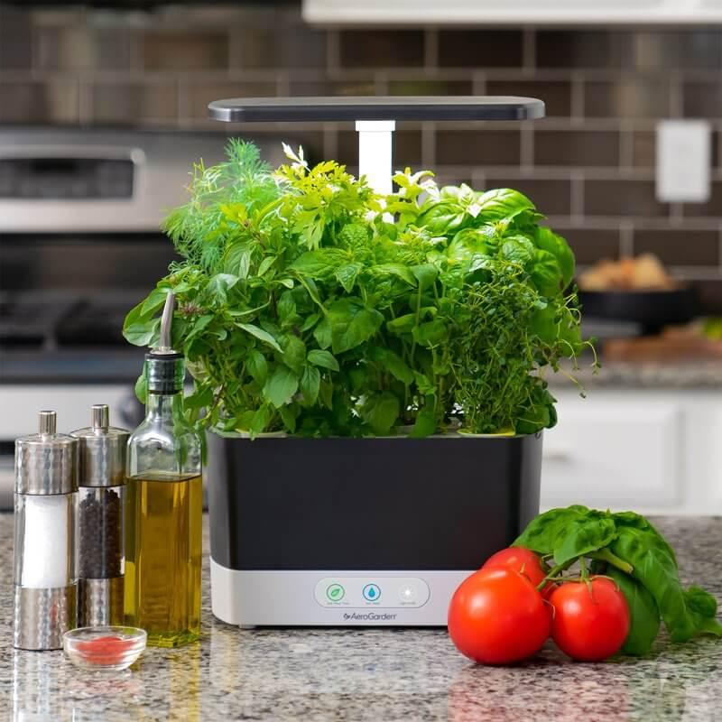 Smart Gardens-Harvest-AeroGarden
