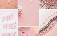 monochrome pastel pink mood board inspiration from design and nature